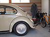 0118_beetle2